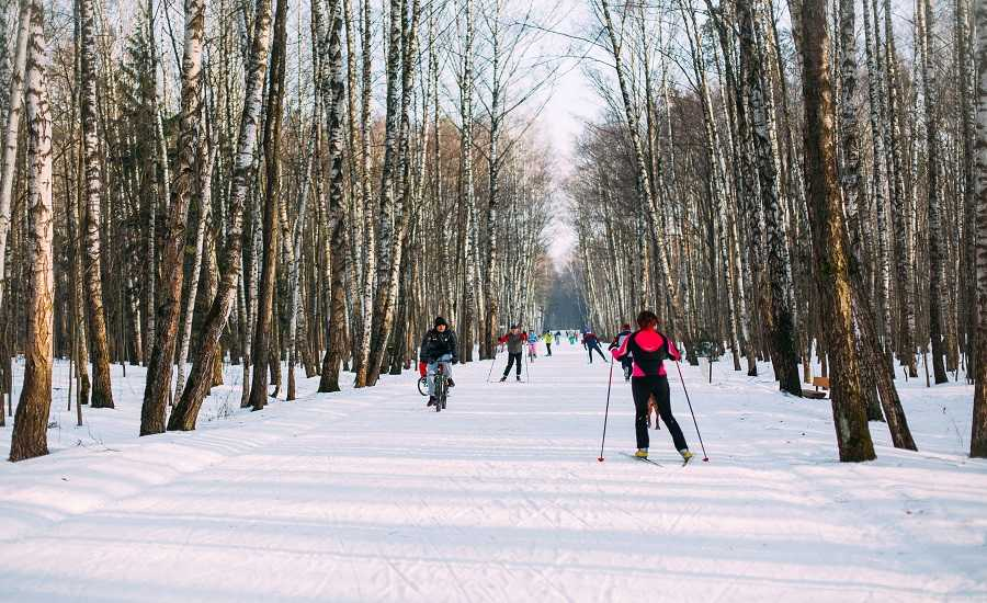 Winter Activities in St.Petersburg - Skiing